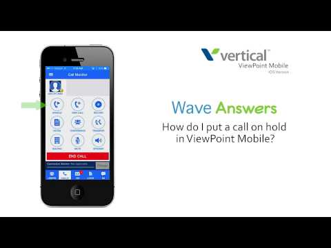How do I put a call on hold in ViewPoint Mobile on my Apple device