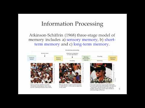Lecture Fourteen: Introduction to Memory