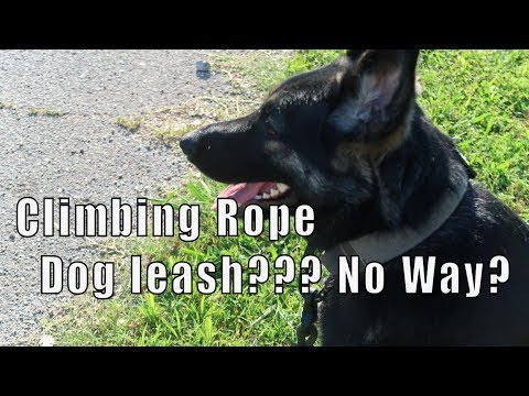 Ultimate Climbing Rope Dog Leash (made in USA)