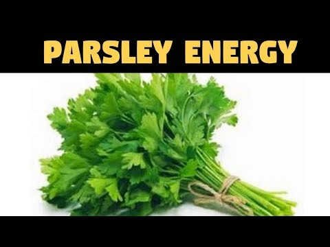 Parsley energy | Parsley Health Benefits, Facts, Research