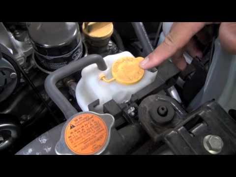 Maita Subaru Service Tip-Checking Coolant Level