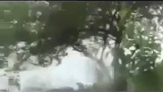 Burma Fight Mujahideen vs Burma Army