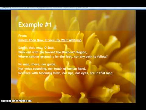 Examples of Triplet Poetry