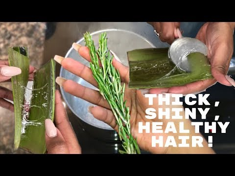 DIY Rosemary + Aloe Vera Juice HAIR RINSE + LEAVE-IN CONDITIONER | Nia Hope