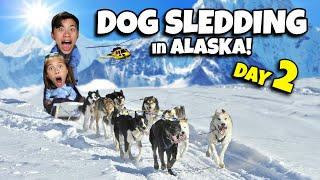 DOG SLEDDING IN ALASKA!!! Glacier Helicopter Tour in Juneau - CRUISE WEEK Day 2