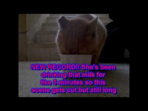 Layka Playing and Eating - Vlog 1- Feb.15.2010