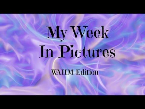 Week In My Shoes! Wahm version!