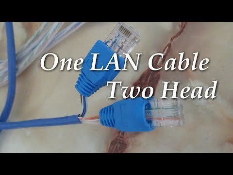 How To Crimp One Lan Ethernet Cable (Cat5e) Split Share to Two Laptop System