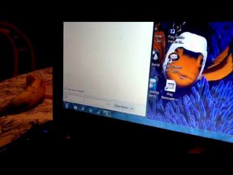 Acer aspire how to use webcam