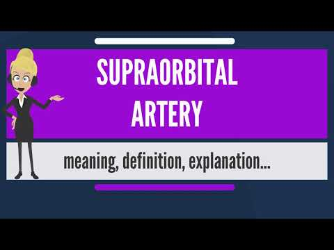 What is SUPRAORBITAL ARTERY? What does SUPRAORBITAL ARTERY mean? SUPRAORBITAL ARTERY meaning