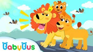 King of Forest: Big Lion   Baby Panda Goes to Forest   Kids Songs collection   BabyBus