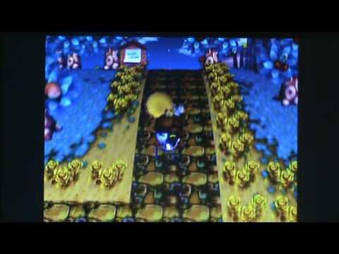 Animal Crossing: City Folk - How To Catch a Tarantula