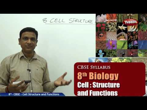 Cell Structure and Functions | Class 8th Science-Biology | NCERT | CBSE Syllabus | Live Videos