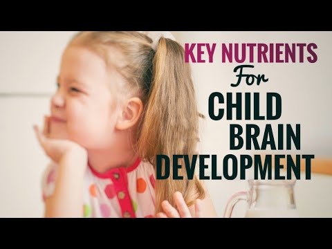 KEY NUTRIENTS FOR CHILD BRAIN DEVELOPMENT