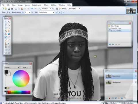 Paint.Net - How to leave one item in color from a color photo