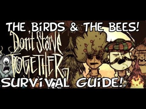 Don't Starve Together - A Survival Guide Addendum - The Birds & The Bees!