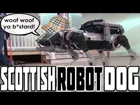 SCOTTISH ROBOT DOG!