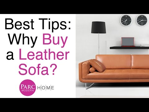 Insider Tips on Buying a Leather Sofa & Furniture | Parc Modern