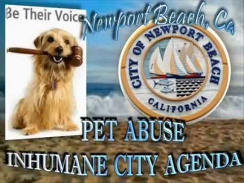 TODAY SHOW- AKC Registered PUPPY MILL Puppy - PET STORE Torture Sales - NEWPORT BEACH CALIFORNIA
