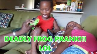 Download Deadly Frog Prank on 2 yr old Hilarious Must Watch!!! Video