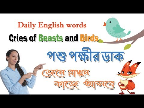 Daily English words | Cries of Beasts and Birds - পশু পক্ষীর ডাক | Improve English  Vocabulary