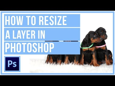 How To Resize A Layer In Photoshop CC - Photoshop Tutorial
