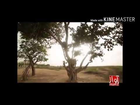 Xxx Mp4 Top Indain Video Song 3gp Sex