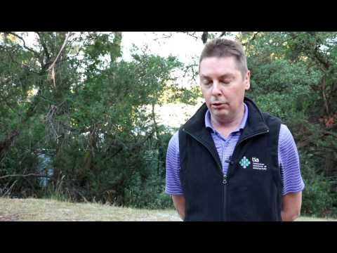 Bio-fumigation Trials - Video
