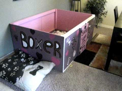Whelping Box Verses Using a pool