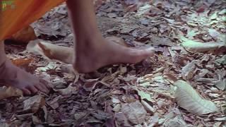 Tathagatha Buddha Movie Song - Tan pinjar hain man hain panchi, chhod ke pinjra udd jayein panchhi.