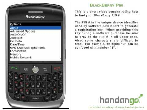 BlackBerry Curve (8900) How To Find Your PIN #