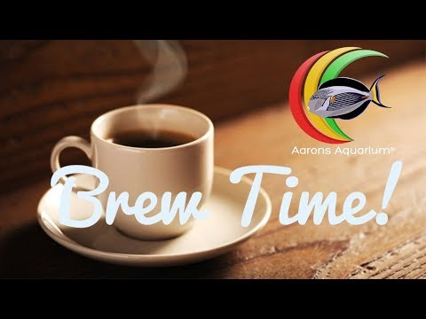 Brew Time Testing Out New Features 14-03-18