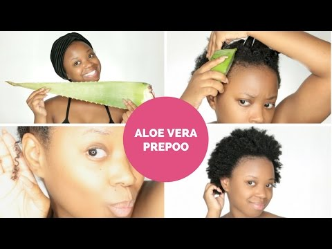 Super BOMB Pre Poo Using Aloe Vera For Natural Moisturized Hair & Growth