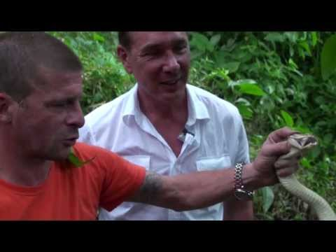 The Snake you never want to meet in Costa Rica