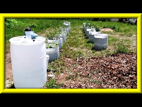 10 Month Review Of Automatic Watering System For Wicking Barrels