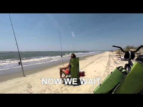 Shark Surf fishing South Carolina  : A day in the