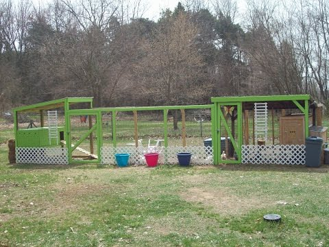 How we built our duck coop