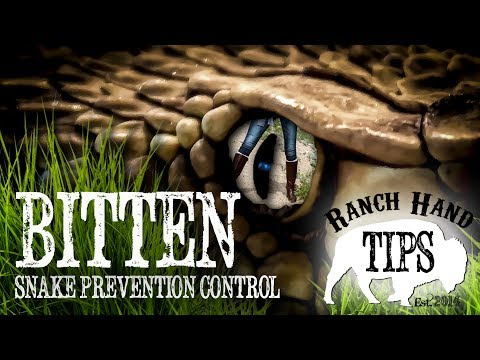 How to prevent snakes from coming in your yard - Ranch Hand Tips