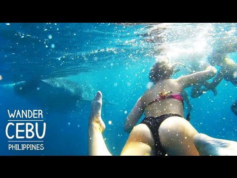 4 Days Cebu DIY Travel in 4 Minutes (with Bohol Sidetrip)