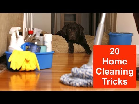 EASY CHEAPY HOME CLEANING TRICKS