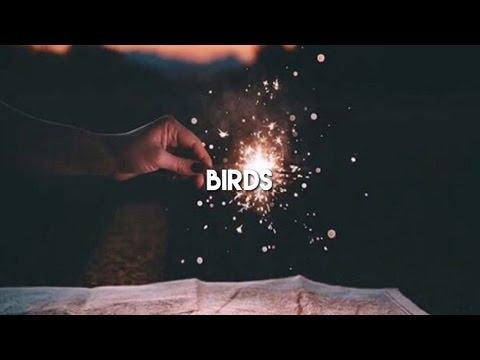 birds - thomas sanders ft dodie (cover audio)