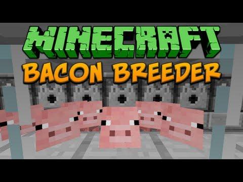 Minecraft: Bacon Breeder Tutorial