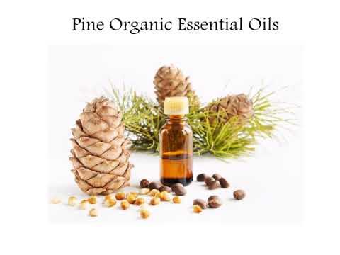 Get online best quality of Organic Essential Oils via Neoessentialoils Video