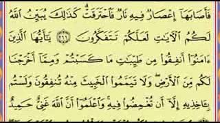 Surah Al Baqarah 263 to 271 - Said al-Ghamdi