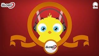 Pulcino Pio Tv: il canale del pulcino più amato del web