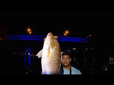 Night Fishing During The Mullet Run - Mako Pro 17 Skiff