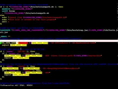 Informatica Node HeapSize Setting