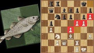 Stockfish Goes Barbarian Mode Against Leela! || TCEC Superfinal Season 17