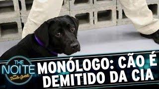 Monólogo: Cachorrinha é demitida da CIA | The Noite (15/11/17)