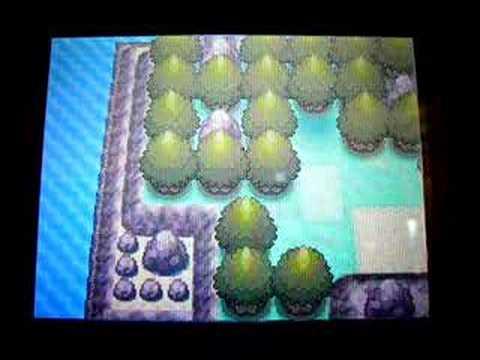 Pokémon Diamond: Getting Darkrai with Action Replay